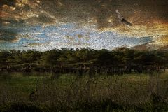 fauna en la pintura del campo Imagen de archivo