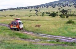 Fauna en Maasai Mara National Park, Kenia Foto de archivo