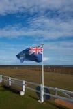 Fauna - Falkland Islands Fotografía de archivo libre de regalías