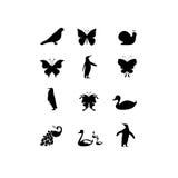 Fauna icon. On white background , illustration Stock Image