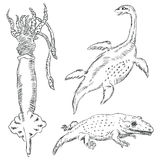 Fauna-paleontologie Royalty-vrije Stock Afbeeldingen