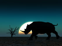 Fauna selvatica 22 di rinoceronte Immagini Stock Libere da Diritti