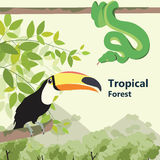 Fauna tropical del bosque de la vida del estilo de Eco del bosque libre illustration