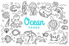 Faune d'océan de mer illustration libre de droits