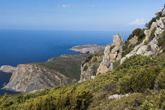 Faune de la Sardaigne photographie stock
