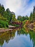 Faune de la Sibérie en automne image libre de droits