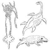 Faune-paléontologie Images libres de droits