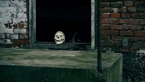 Fausse tête squelettique dans la porte Devant la scène du crime banque de vidéos