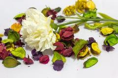 Fausses fleurs sur le fond images stock