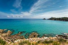 Fautea sulla costa Est della Corsica Fotografie Stock