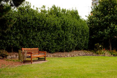 Fauteuil en bois dans le jardin Photos stock