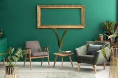 Fauteuil vert dans le salon Images libres de droits