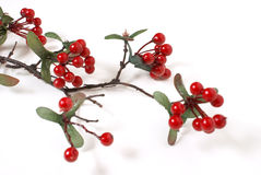 Faux Berry Branch Royalty Free Stock Photo