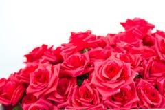 Faux de rose de rouge Images libres de droits