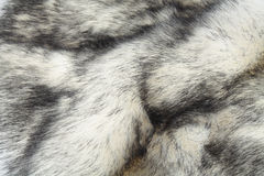 Faux fur Royalty Free Stock Photo