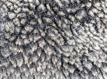 Faux fur as background Royalty Free Stock Image