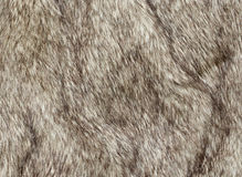 Faux fur Stock Image