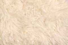 Faux fur rag pattern Stock Image