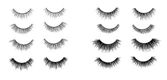 Faux lashes set isolated on white background, Vector illustration stock illustration