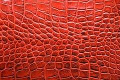 Fauxalligatorleder im rote Farbtonabschluß oben stockfotos