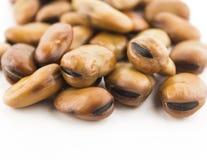 Fava beans Stock Photos