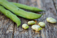 Fava beans Royalty Free Stock Image