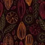 Fava di cacao disegnata a mano Vector il reticolo senza giunte Fotografie Stock