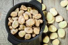 Favas cozidos com cebola e oréganos fotografia de stock