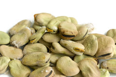 Fave beans Royalty Free Stock Images