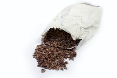 Fave di cacao Immagine Stock Libera da Diritti