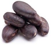 Fave di cacao Immagini Stock Libere da Diritti