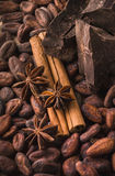 Fave di cacao crude, cioccolato nero, bastoni di cannella, anice stellato Immagini Stock Libere da Diritti