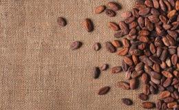 Fave di cacao crude sul licenziamento della vista superiore, primo piano fotografie stock libere da diritti