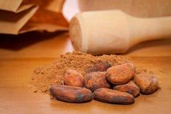 Fave di cacao e polvere di cacao Fotografia Stock Libera da Diritti