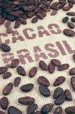 Fave di cacao e tela di iuta fotografia stock