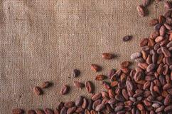 Fave di cacao grezze immagine stock libera da diritti