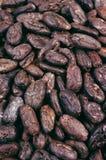 Fave di cacao - priorità bassa fotografia stock