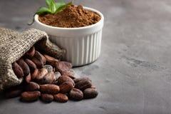 Fave e polvere di cacao immagini stock