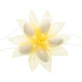 Faveur jaune de confettis photos libres de droits