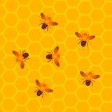 Favi con le api del miele Fotografia Stock Libera da Diritti