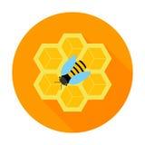 Favo con l'icona del cerchio dell'ape Immagini Stock