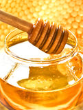Favo de mel do mel e da abelha Foto de Stock