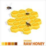 Favo de mel e abelhas doces isométricos Mel cru Ilustração do vetor isolada no branco ilustração stock
