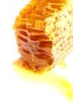 Favo de mel isolado do close-up Imagem de Stock Royalty Free
