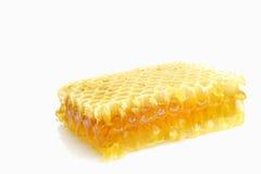 Favo de mel isolado no branco Fotos de Stock Royalty Free