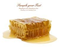 Favo de mel no branco imagens de stock