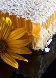 Favo de mel no fundo reflexivo preto Foto de Stock Royalty Free