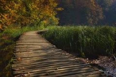 Favola di autunno nel parco nazionale fotografie stock