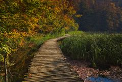 Favola di autunno nel parco nazionale fotografia stock