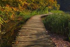Favola di autunno nel parco nazionale immagini stock libere da diritti